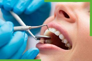 odontologo quito
